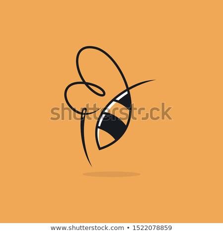Kabala varr elemek illusztráció anyagok művészet Stock fotó © lenm