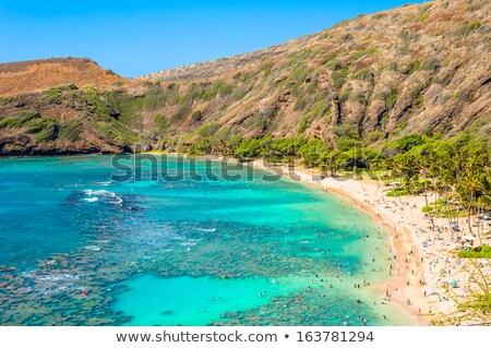 Hanauma Bay, Oahu, Hawaii Stock photo © dirkr