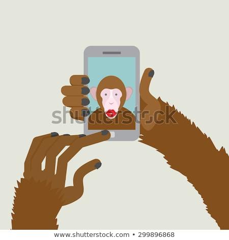 猿 動物 スマートフォン 指 アフリカ 写真 ストックフォト © popaukropa