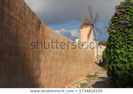 Traditional stony old windmill on nature Stock photo © studioworkstock