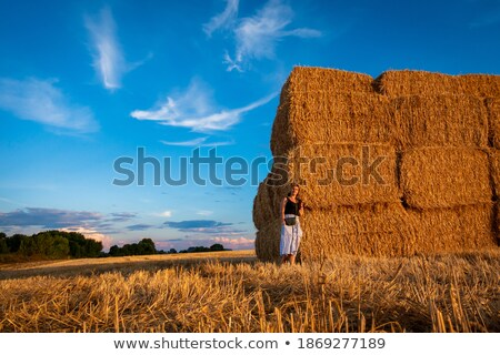 a girl standing on a haystack stock photo © is2