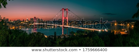 Cityscape Стамбуле мнение башни лодках Сток-фото © Givaga