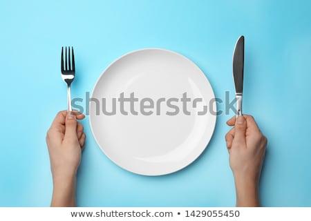 Empty plate with utensils Stock photo © karandaev