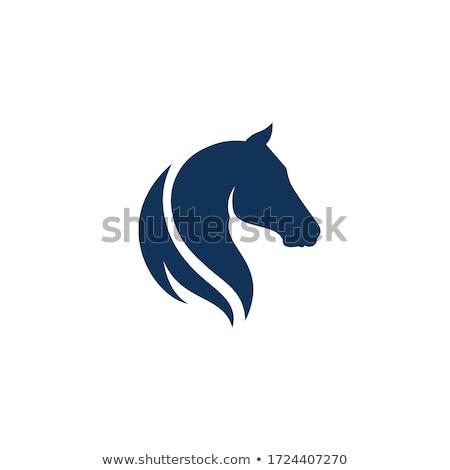 馬 · 頭 · ベクトル · スケッチ · ファーム · 黒 - ストックフォト © djdarkflower