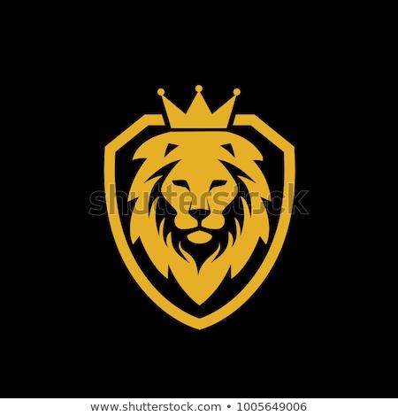 oroszlán · király · korona · vektor · felirat · illusztráció - stock fotó © maryvalery