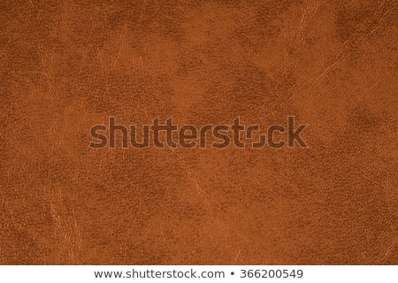 Brown leather scrap Stock photo © luissantos84