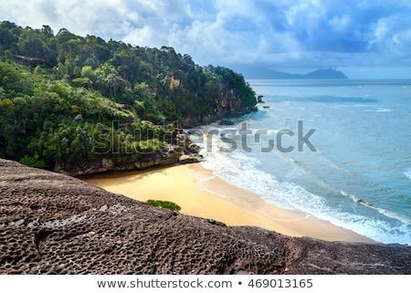 beach at bako national park stock photo © juhku
