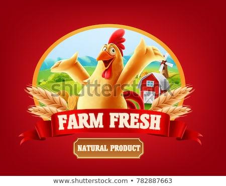 Feliz Cartoon gallina huevo cómico Foto stock © Genestro