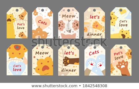 pet shop poster text sample vector illustration stock photo © robuart