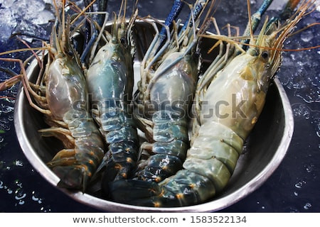 Fresh prawns for sale at a market Stock photo © boggy