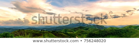 panorama of green mountains in the clouds stock photo © vapi