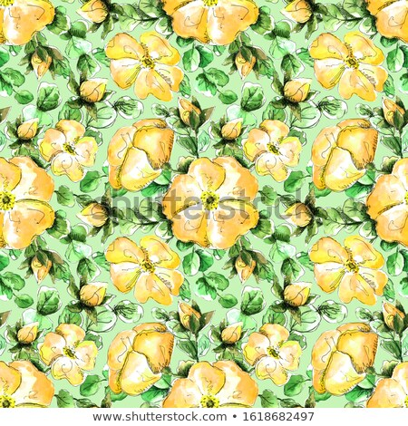 装飾的な 手描き フローラル 飾り バター かわいい ストックフォト © Margolana