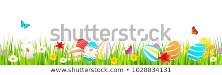 свежие нарциссов пасхальных яиц красочный яйца Христос воскрес Сток-фото © BarbaraNeveu