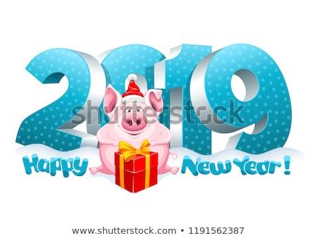 Disznó ajándék doboz kalap új év karácsony üdvözlőlap Stock fotó © robuart