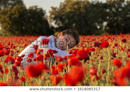 かわいい · 少年 · フィールド · 赤 · ポピー - ストックフォト © ElenaBatkova