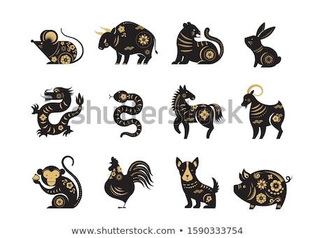 Chińczyk astrologia ikona wektora cute zodiak Zdjęcia stock © VetraKori