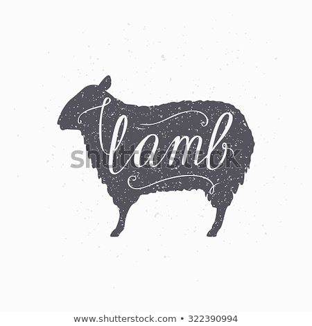 lamb sheep vintage typography lettering retro print stockfoto © foxysgraphic
