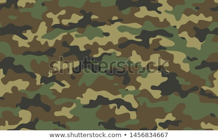military green camouflage pattern texture background design Stock photo © SArts