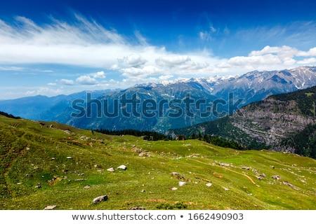 Primavera valle himalaya montagna India prato Foto d'archivio © dmitry_rukhlenko