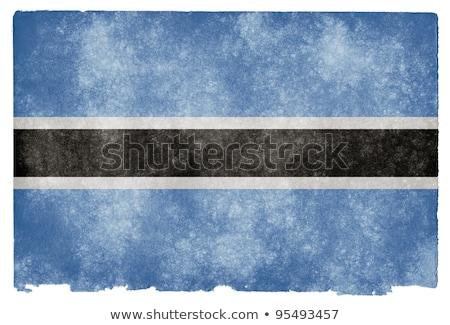 Botswana grunge bandera edad vintage textura grunge Foto stock © HypnoCreative