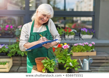 kıdemli · kadın · bahçıvanlık · pot · çiçekler - stok fotoğraf © 5xinc