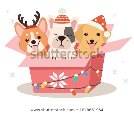 Cartoon Character Dog stock photo © RAStudio