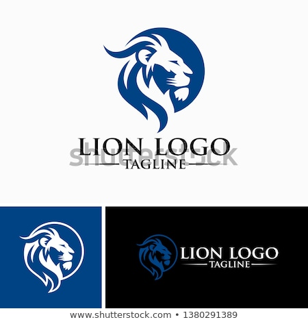 Lion Head Graphic Mascot Vector Image Stock photo © chromaco