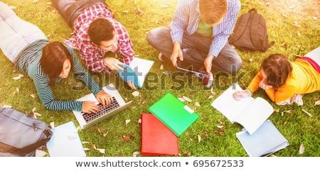 universidad · estudiantes · usando · la · computadora · portátil · campus · césped · ordenador - foto stock © HASLOO