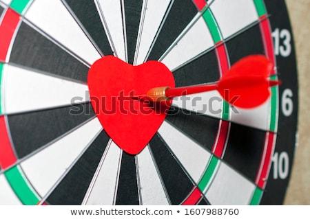 vektor · piros · darts · nyíl · cél · központ - stock fotó © kovacevic