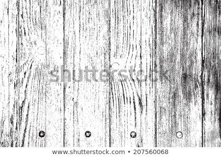 Black and White Woodgrain Texture Stock photo © ArenaCreative