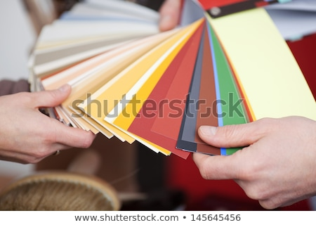 decorator holding paint color charts stock photo © photography33