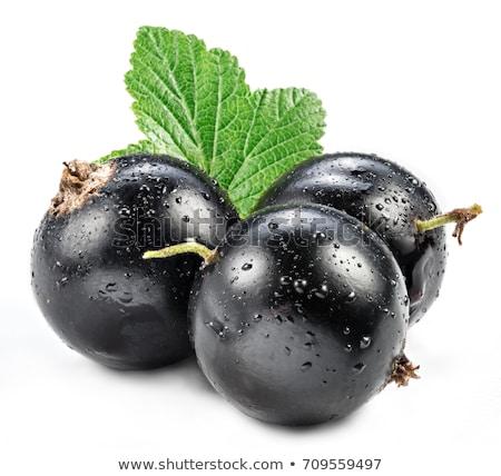 Stock photo: isolated blackcurrant