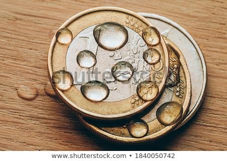 Europeo moneda agua negocios financiar euros Foto stock © pterwort