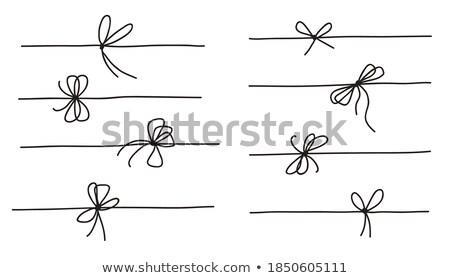 Establecer cuerdas patrón camino objeto línea Foto stock © perysty