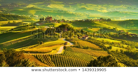 Grinzane Cavour Castle with vineyard, Piedmont, Italy Stock photo © phbcz