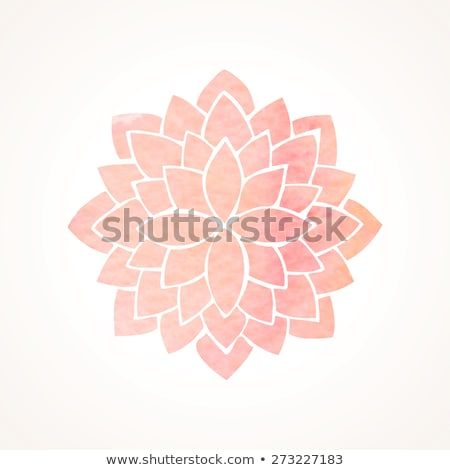 Lotus mandala rose coloré stylisé Photo stock © hpkalyani