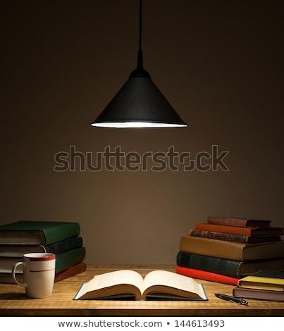könyv · villanykörte · izolált · fehér · üveg · tanulás - stock fotó © ozaiachin