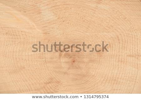 closeup of old pine saw cut stock photo © tashatuvango