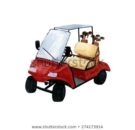 ゴルフバッグ 再生 緑の草 ゴルフ スポーツ 楽しい ストックフォト © EllenSmile