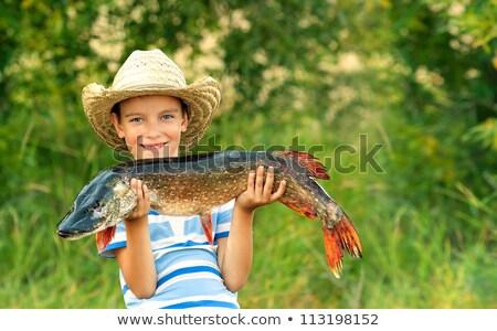 garçon · poissons · enfant · fond - photo stock © zzve