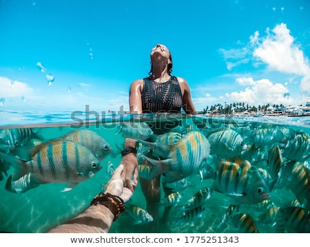Playa Brasil paraíso Foto stock © swimnews