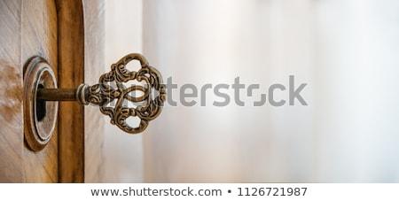 Klasszikus ajtóküszöb antik ajtó fából készült középkori Stock fotó © tepic