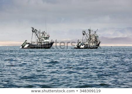 Dois pescaria barcos manhã céu água Foto stock © mariephoto