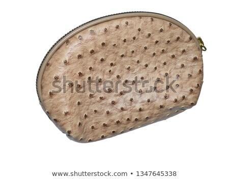 marrom · elegante · crocodilo · couro · bolsa · isolado - foto stock © frameangel
