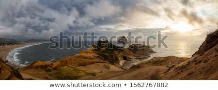 Nublado paisagem ver torre floresta Foto stock © Kayco
