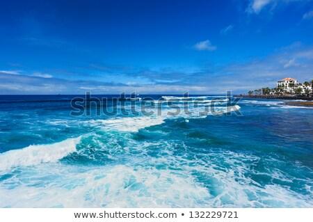Costa tenerife canárias Espanha praia mar Foto stock © amok