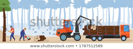 woodcutter Stock photo © ssuaphoto