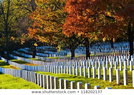 DC from Arlington Cemetery  Stock photo © rmbarricarte