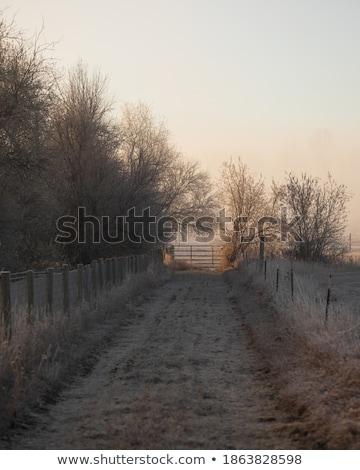 Köd vidék sáv fal természet háttér Stock fotó © chris2766