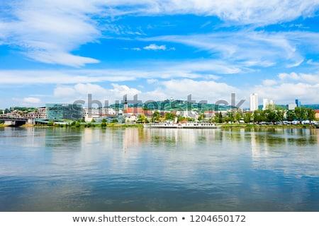Панорама Дунай реке Австрия свободный пространстве Сток-фото © w20er